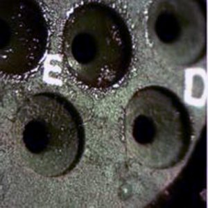 fungal growth on electrical connector following MIL STD 810